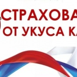 Страхование от укуса клеща., Барнаул