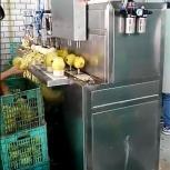 Машина для яблоко чистки и удаления сердцевины 400 кг/час, Барнаул