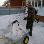 Уборка снега, Барнаул