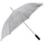 Зонт, Барнаул