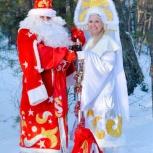 Дед мороз и снегурочка, Барнаул